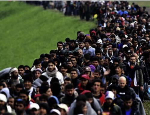 Δεν είναι πρόσφυγες – Δεν είναι μετανάστες